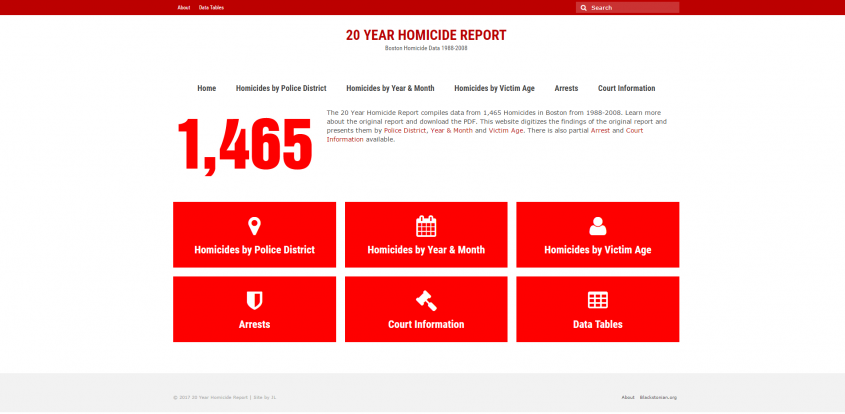 20 Year Homicide Report